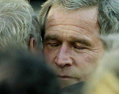 bush-hug