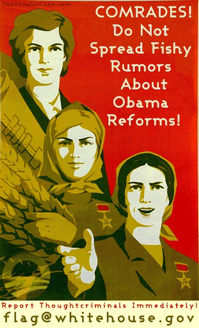 Obamacare_Flag_Poster_Hush2